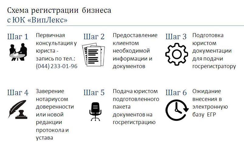 Инфографика - Схема регистрации бизнеса